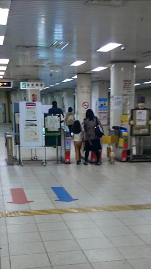 inu_kaisatsu1