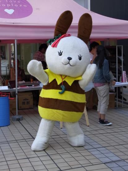 kokugakuin_kokupyon6