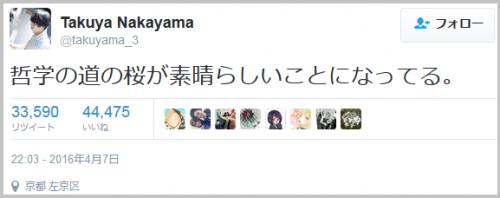 tetugakunomiti_sakura (1)