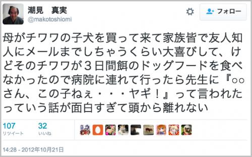 chiwawa_yagi14