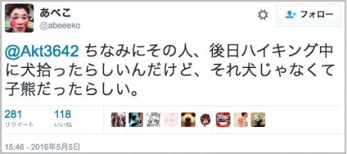 chiwawa_yagi17