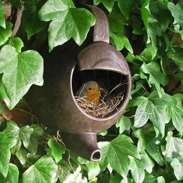 frogbird (15)