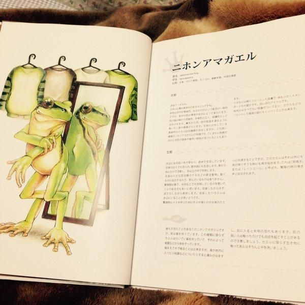 kaeruzukan (3)