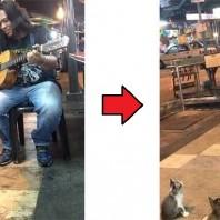 streetmusic_cat1