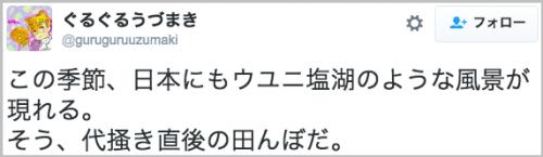 tanbo_uyuni7