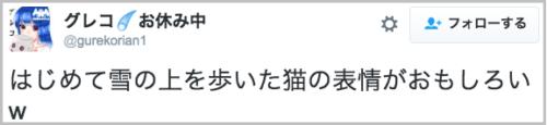 hajimetenoyuki_neko5
