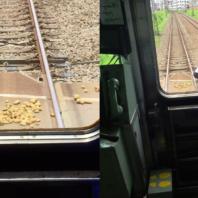 jagaimo_train5
