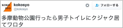 kujaku_tamadobutsukoen4