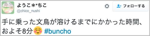 melting_buncho11