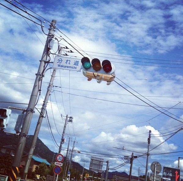 rare_chimei (3)