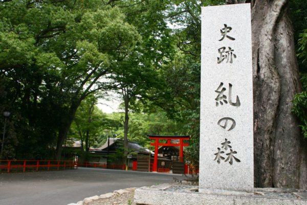 shimogamojinja_hikarinomatsuri7