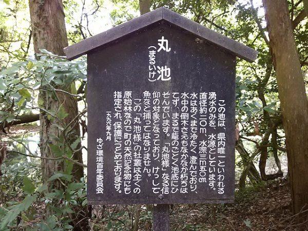 yamagataken_matuikesama17