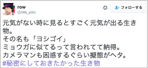 yoshigoi_gitai15