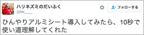 harinezumi_hinyarisheet3