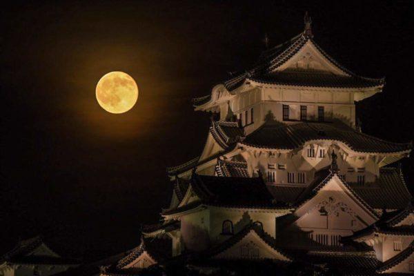 moon_himeji (3)