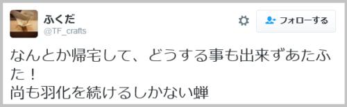 semi_uka (30)