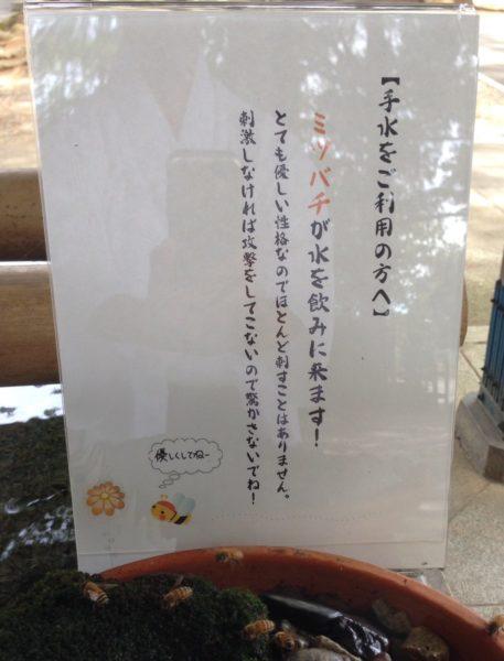 mitsubachi_water (1)