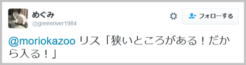 risu_sukima (11)