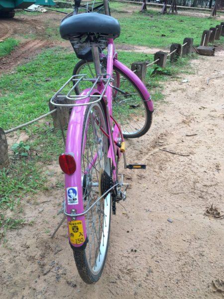 stealedbike (7)