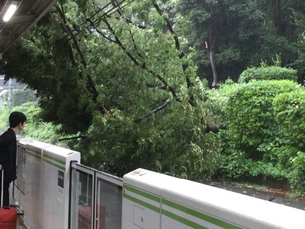 taifuu9_matome (1)