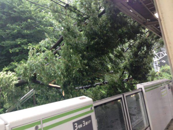 taifuu9_matome (5)