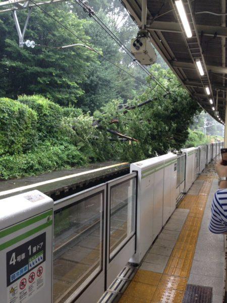 taifuu9_matome (6)