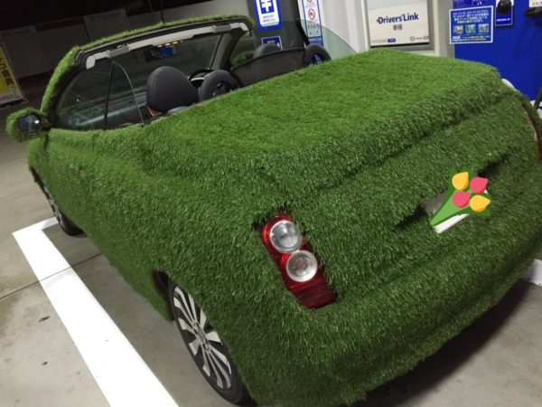 grasscar-10