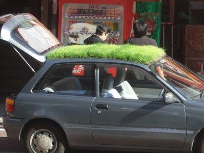 grasscar-5