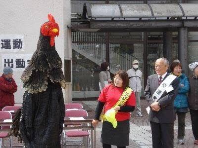 kawamata_shamo-6