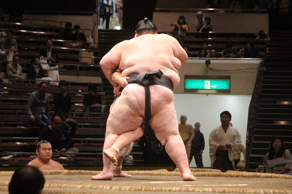 sumou_bigger-2