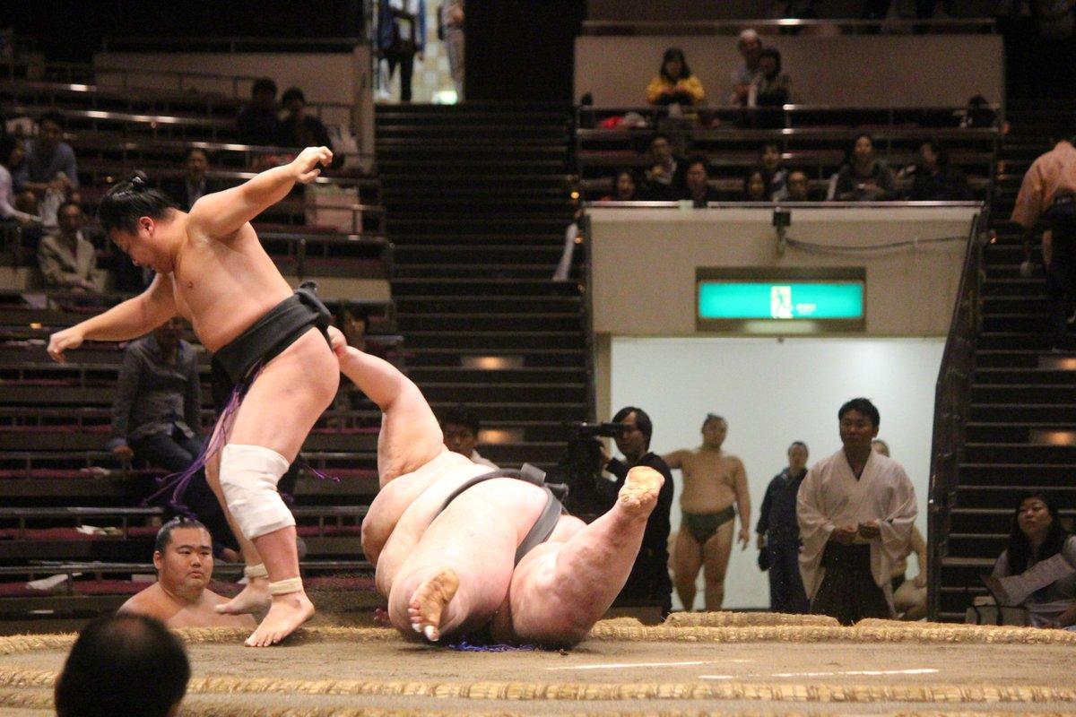 sumou_bigger-3