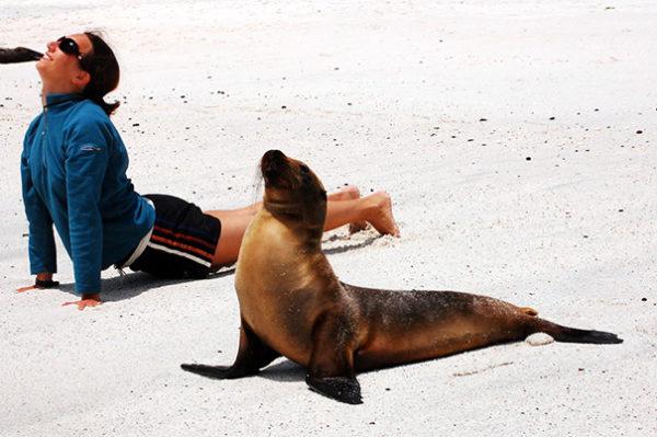 yoga_animal (5)