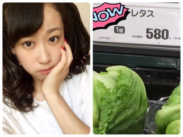 yasai_koutou-6