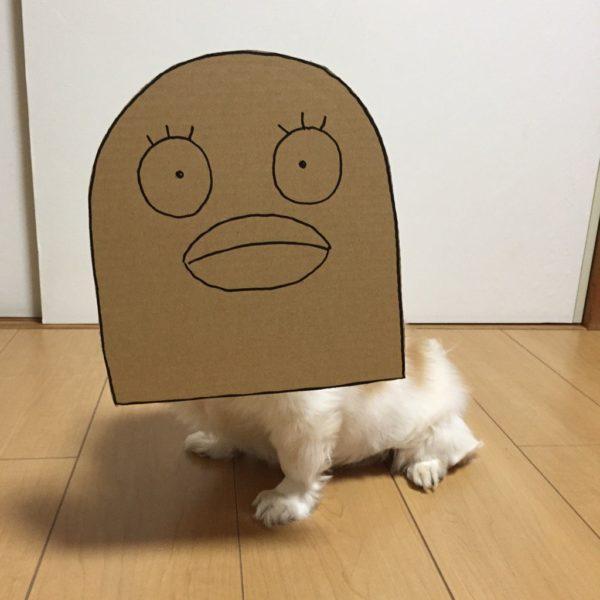 danborudog-8
