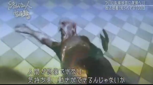 miyazakihayao_kawakami-7