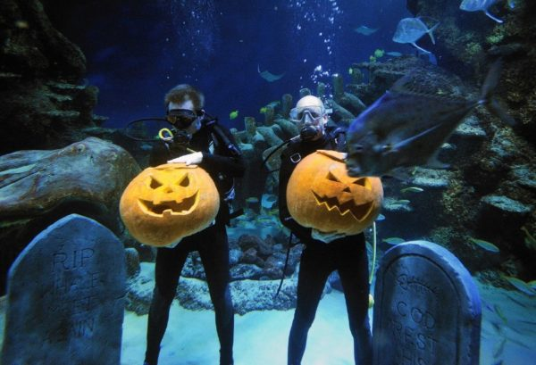 Gareth Calvert (left) and Jamie Oliver carve faces on pumpkins underwater, to help launch the Lost Souls Halloween special at the SEA LIFE London Aquarium this weekend. PRESS ASSOCIATION Photo. Picture date: Wednesday October 27, 2010. Photo credit should read: John Stillwell/PA Wire