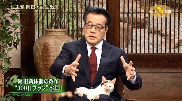 【ペット】中年男性「猫が家族で私だけに懐かない…」その解決策 [無断転載禁止]©2ch.net YouTube動画>6本 ->画像>24枚