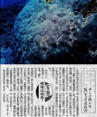 asahi-curation5