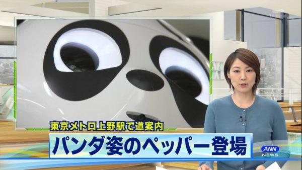 pandapepper-5