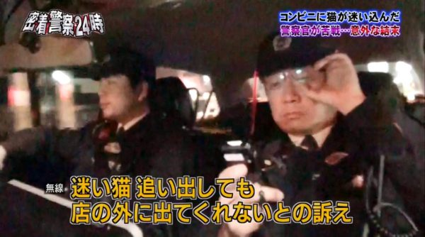 police-cat-3