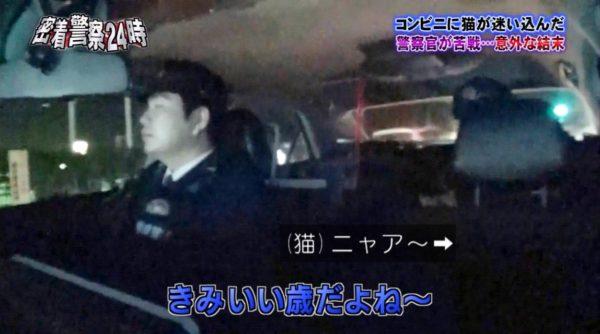 police-cat-8