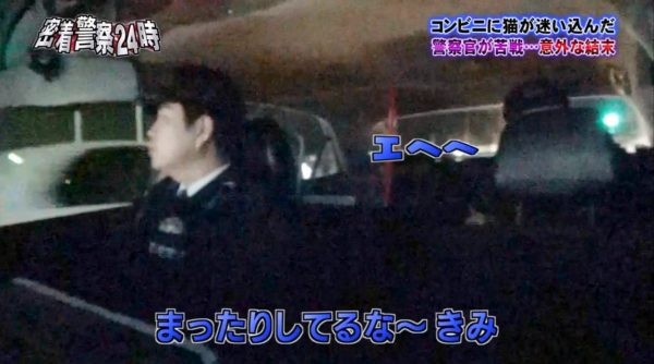 police-cat-9