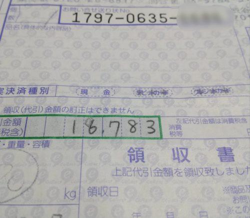 sagawasagi-2