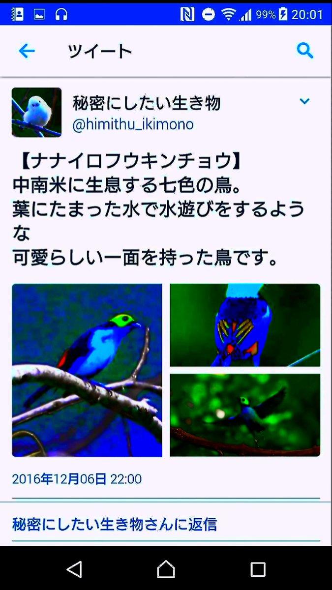 screenshotrekka-6